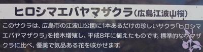 f:id:sumikichi52:20170413195758j:plain