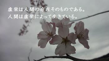 f:id:sumikichi52:20170414091508j:plain