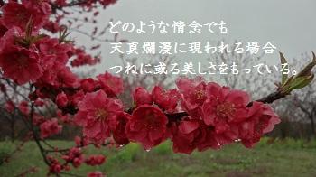 f:id:sumikichi52:20170414091511j:plain