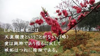 f:id:sumikichi52:20170414091512j:plain