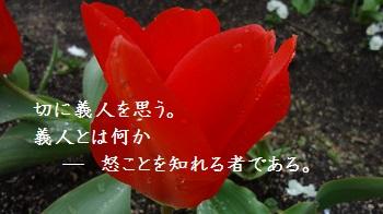 f:id:sumikichi52:20170414091516j:plain