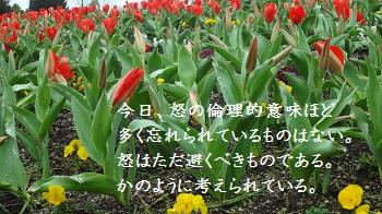 f:id:sumikichi52:20170414091517j:plain