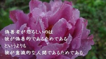 f:id:sumikichi52:20170414091519j:plain