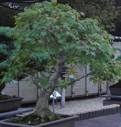 f:id:sumikichi52:20170415123750j:plain