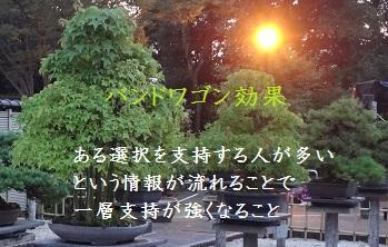 f:id:sumikichi52:20170415123800j:plain