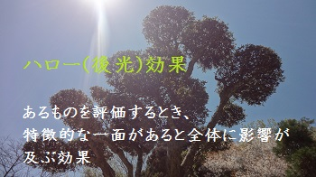 f:id:sumikichi52:20170415123802j:plain