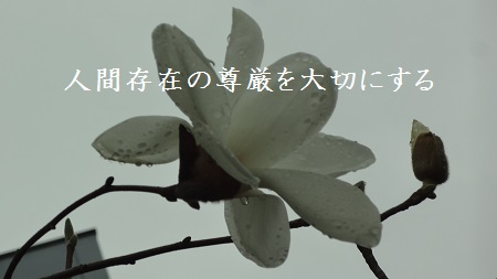 f:id:sumikichi52:20170419101900j:plain