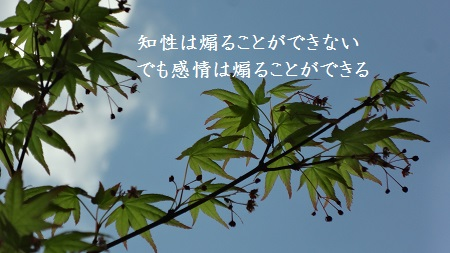 f:id:sumikichi52:20170419101905j:plain