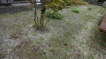 f:id:sumikichi52:20170421084955j:plain