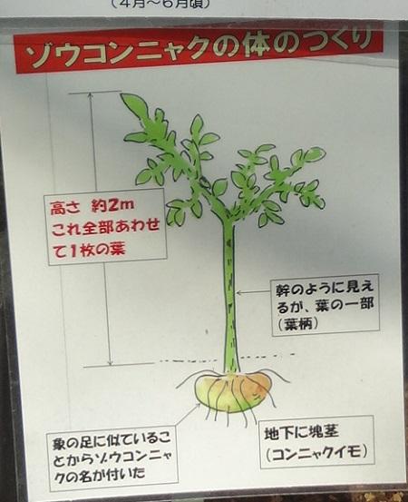 f:id:sumikichi52:20170422192519j:plain