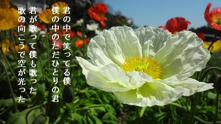 f:id:sumikichi52:20170426075508j:plain