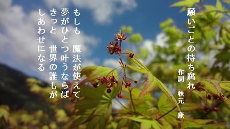 f:id:sumikichi52:20170426075511j:plain