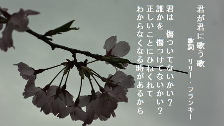 f:id:sumikichi52:20170426075513j:plain
