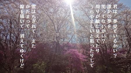 f:id:sumikichi52:20170426075514j:plain