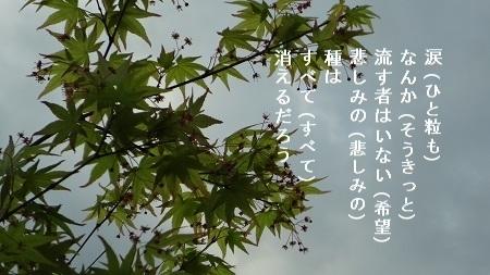 f:id:sumikichi52:20170426075608j:plain
