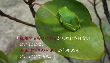 f:id:sumikichi52:20170427101145j:plain