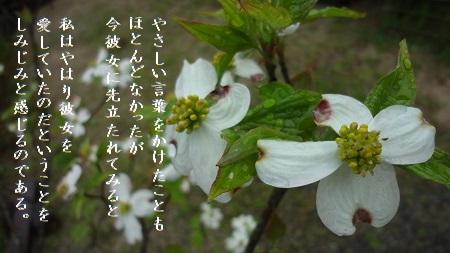 f:id:sumikichi52:20170427101146j:plain