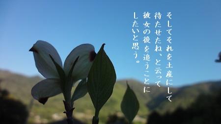 f:id:sumikichi52:20170427101148j:plain