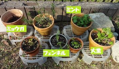 f:id:sumikichi52:20170429093537j:plain