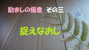f:id:sumikichi52:20170520161901j:plain