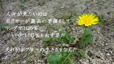 f:id:sumikichi52:20170602084309j:plain