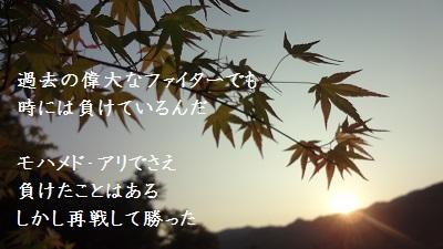 f:id:sumikichi52:20170602084312j:plain