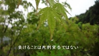 f:id:sumikichi52:20170602084437j:plain