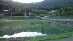 f:id:sumikichi52:20170604200321j:plain