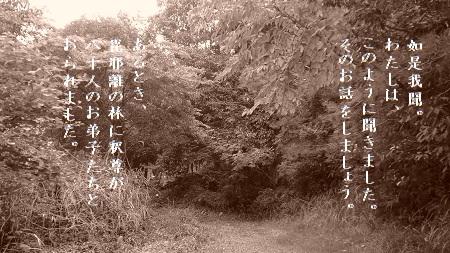 f:id:sumikichi52:20170607115349j:plain