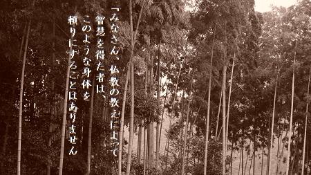 f:id:sumikichi52:20170607115358j:plain