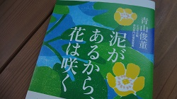 f:id:sumikichi52:20170611210735j:plain