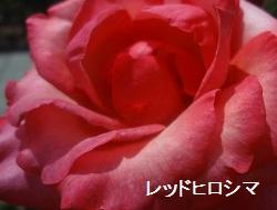 f:id:sumikichi52:20170612172410j:plain