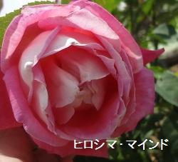 f:id:sumikichi52:20170612172411j:plain