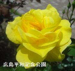 f:id:sumikichi52:20170612172416j:plain