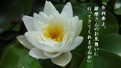 f:id:sumikichi52:20170614125055j:plain