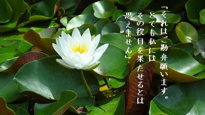 f:id:sumikichi52:20170614125056j:plain