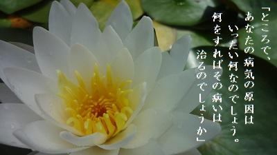 f:id:sumikichi52:20170614125057j:plain
