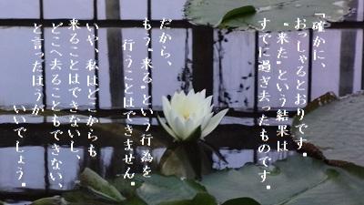 f:id:sumikichi52:20170614125058j:plain