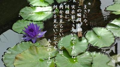 f:id:sumikichi52:20170614125059j:plain