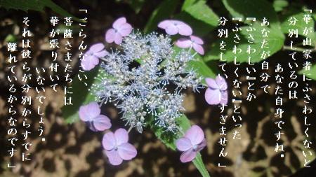 f:id:sumikichi52:20170624131449j:plain