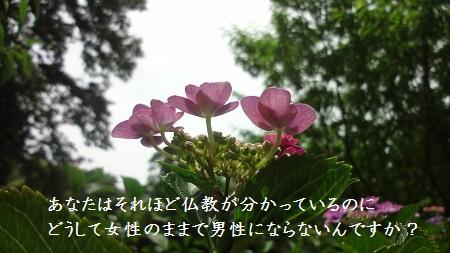 f:id:sumikichi52:20170624131450j:plain