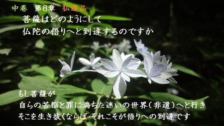 f:id:sumikichi52:20170624131451j:plain