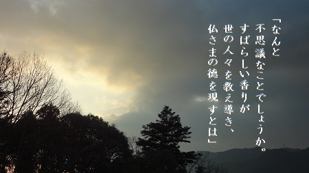 f:id:sumikichi52:20170627233239j:plain