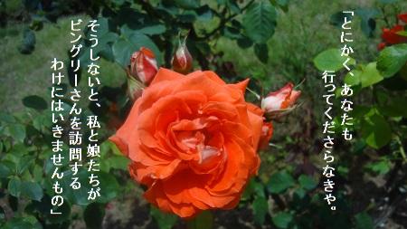 f:id:sumikichi52:20170705215152j:plain