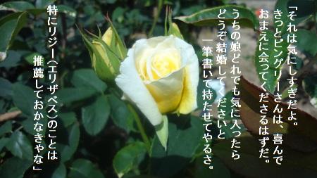 f:id:sumikichi52:20170705215153j:plain