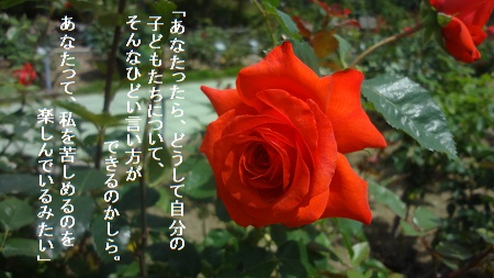 f:id:sumikichi52:20170705215156j:plain
