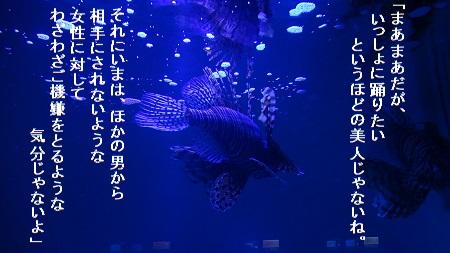 f:id:sumikichi52:20170705215159j:plain