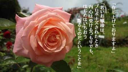 f:id:sumikichi52:20170705215204j:plain
