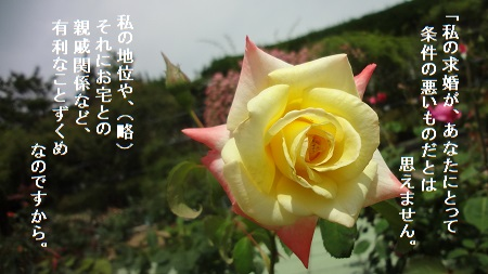 f:id:sumikichi52:20170705215206j:plain