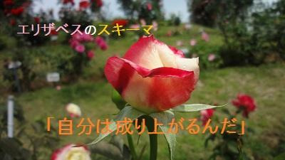 f:id:sumikichi52:20170705215210j:plain